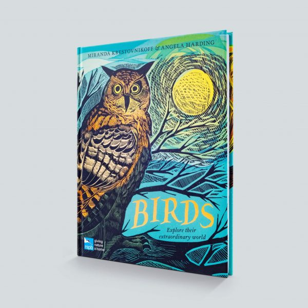 Birds by Angela Harding