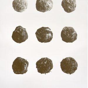 Soil print