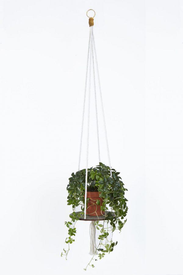 Wald_Plant_Hanger
