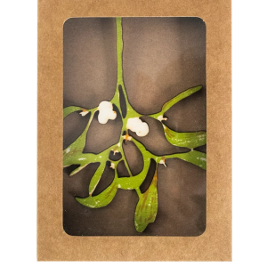 Mistletoe wooden decoration 1
