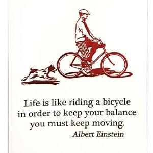 Bicycle Einstein card