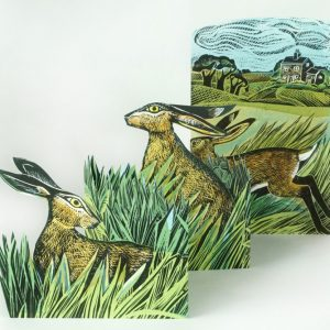 Hares in open field card 1