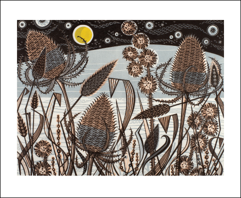 Lakeside Teasels card
